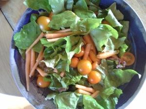 garden salad 7.2015