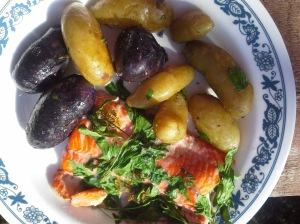 salmon and potatoes july 2015